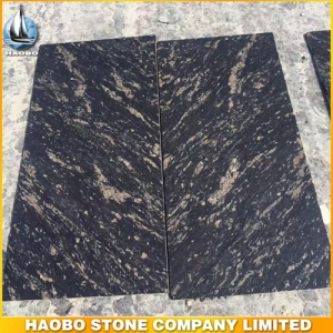 Black Titanium Granite Tile