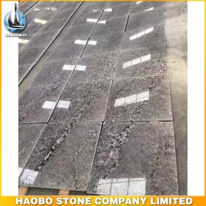 Silver Exotic Granite Tile For Hotel Flooring